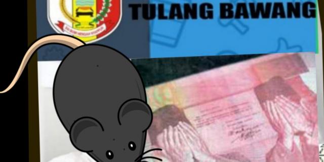 Oknum Pejabat Diskominfo Tuba Disinyalir Melakukan Pencucian Uang
