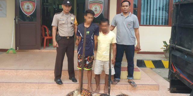 Usai Beraksi, Dua Pelaku Curat Ditangkap Polsek Lambu Kibang