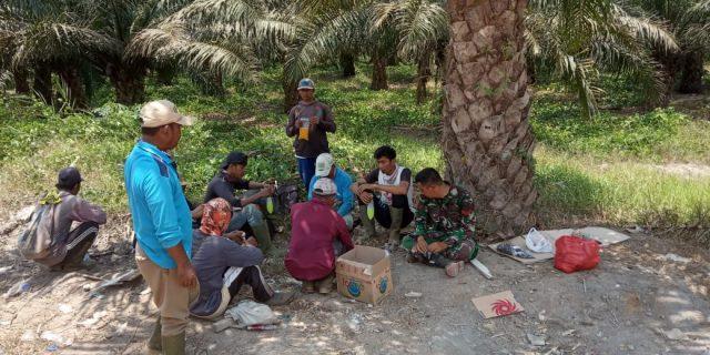 Koptu Edi Babinsa Koramil 426-02/Menggala, Kunjungi Warga di Kebun Sawit